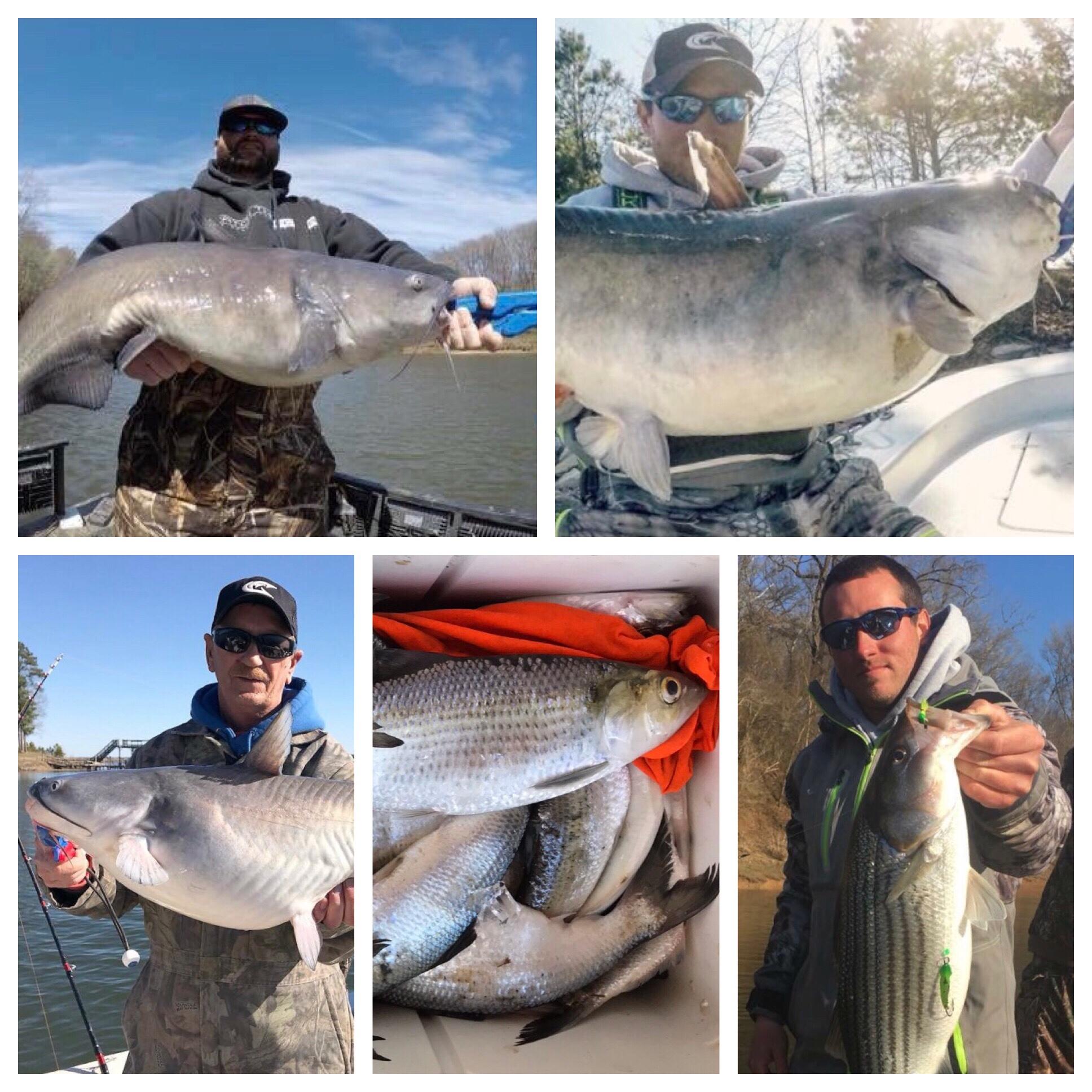 Lake gaston fishing report for Lake gaston fishing
