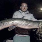 Lake Gaston Fishing Report